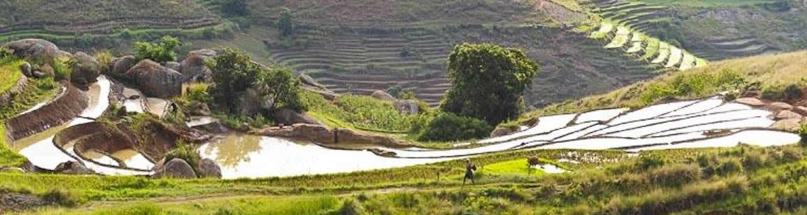 Wildlife and Culture Tour 6N/7D - Madagascar Mozaic Tour